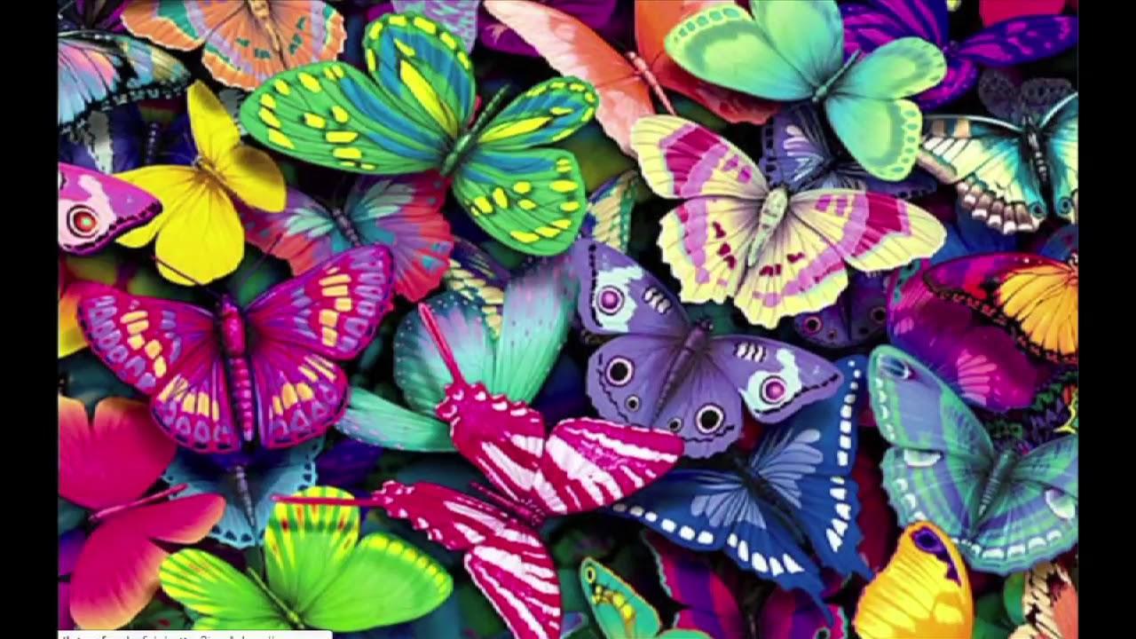 ¿Quieres-ser-experto-en-mariposas-Apúntate-al-1º-observatorio-ciudadano-de-mariposas-urbanas