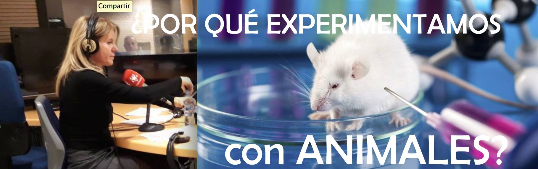 EXPERIMENTCON-ANIMALES