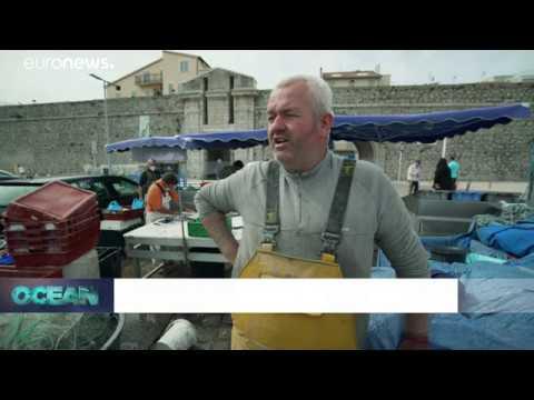 La-pesca-en-tiempos-de-coronavirus